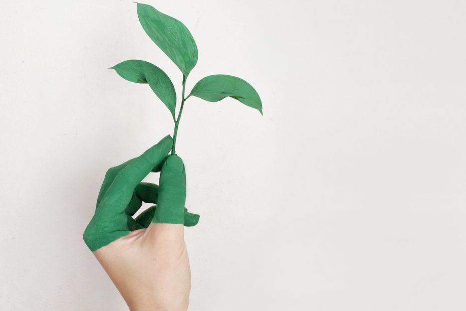 Nachhaltigkeitstag
